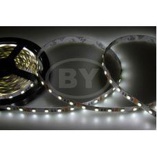 LED лента открытая белая Neon-Night 60 LED/M 10 мм